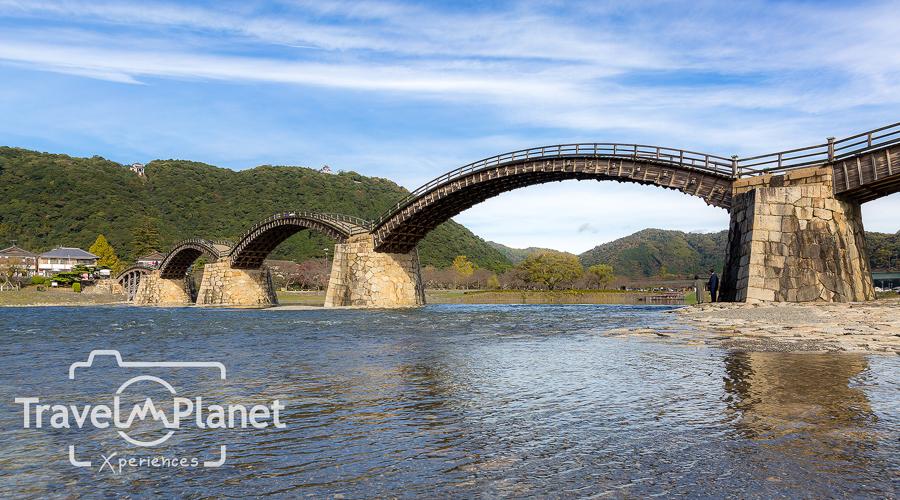 020-JapanRedLeaf-0186