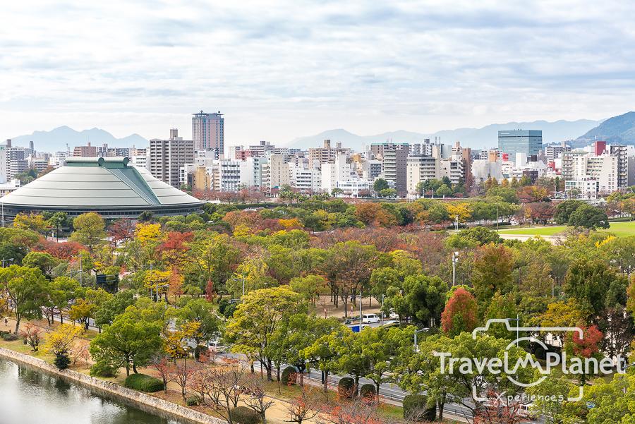 039-JapanRedLeaf-0557