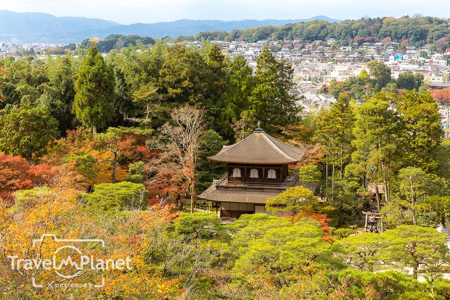 052-JapanRedLeaf-0840