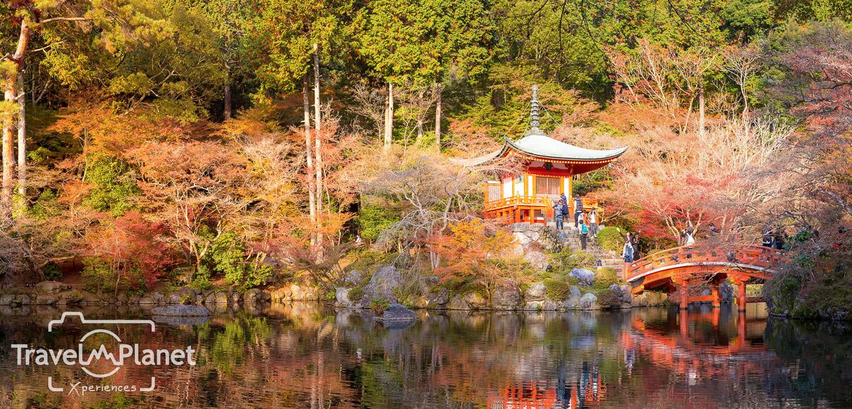 055-JapanRedLeaf-0949-Panorama
