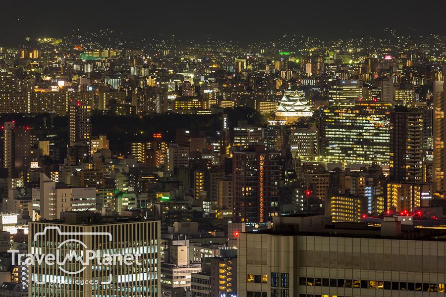 086-JapanRedLeaf-1853