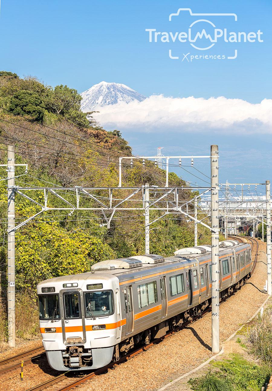 104-JapanRedLeaf-3098
