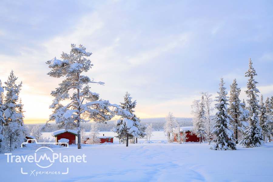 Lapland Winter landscape Sweden