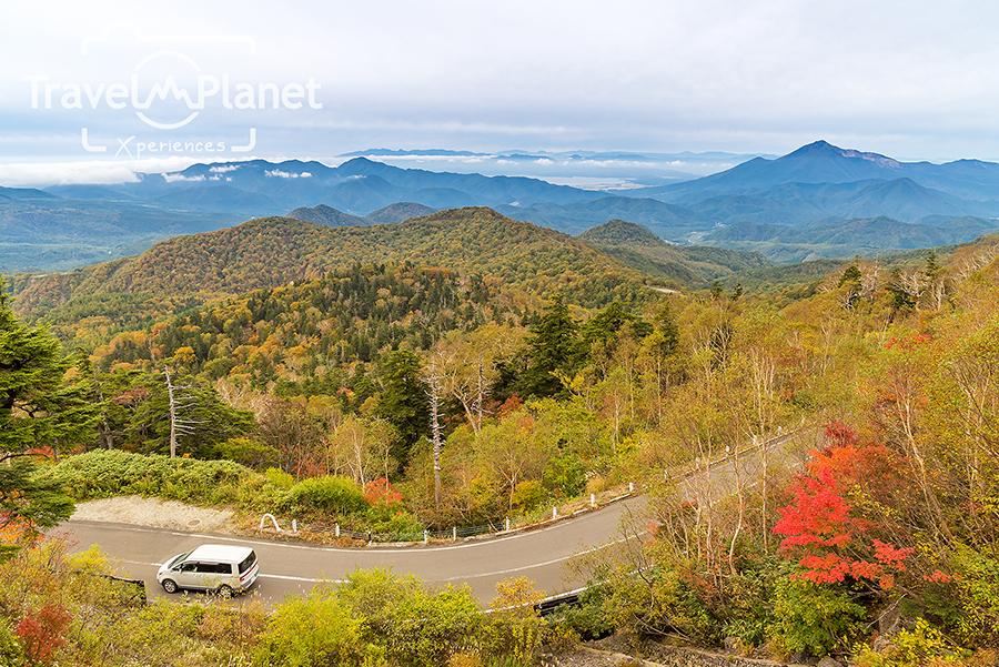 ฟุกุชิมะ Fukushima ใบไม้แดง Autumn
