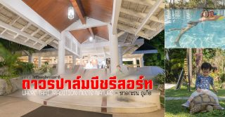 KTC ถาวรปาล์มบีชรีสอร์ท traditional thai meet nature หาดกะรน ภูเก็ต