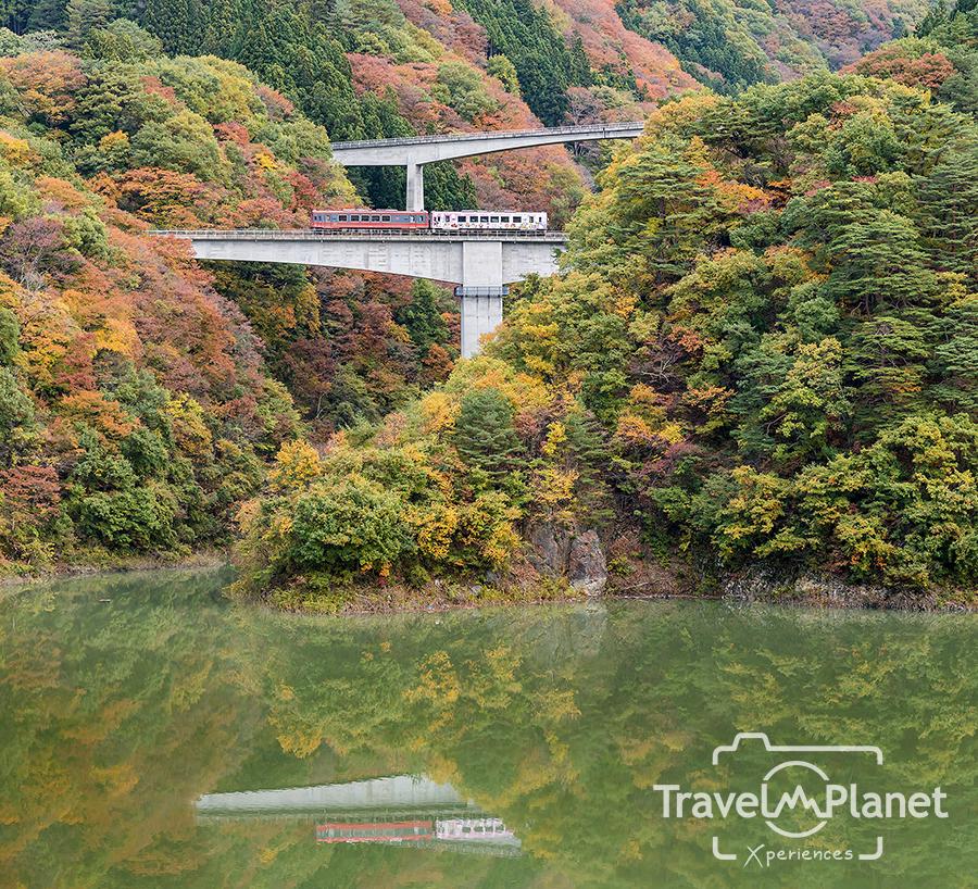 ใบไม้แดง รอบจังหวัด ฟุกุชิมะ Fukushima Autumn