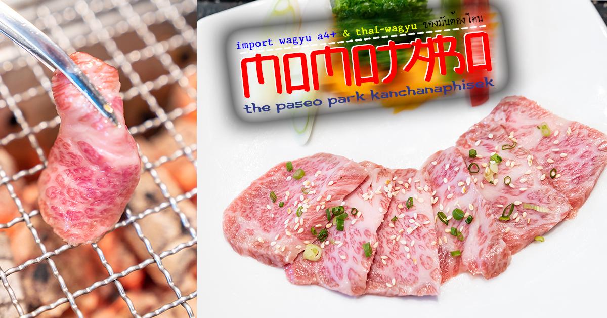 momotaro ปิ้งย่าง เนื้อวากิว เนื้อย่าง Wagyu Beef Yakiniku